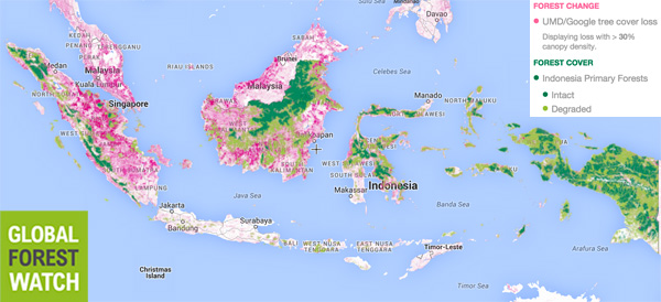 0119gfw_indonesia