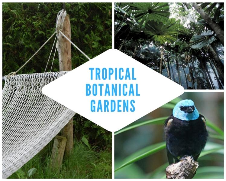 Biodivvy_Botanical Gardens