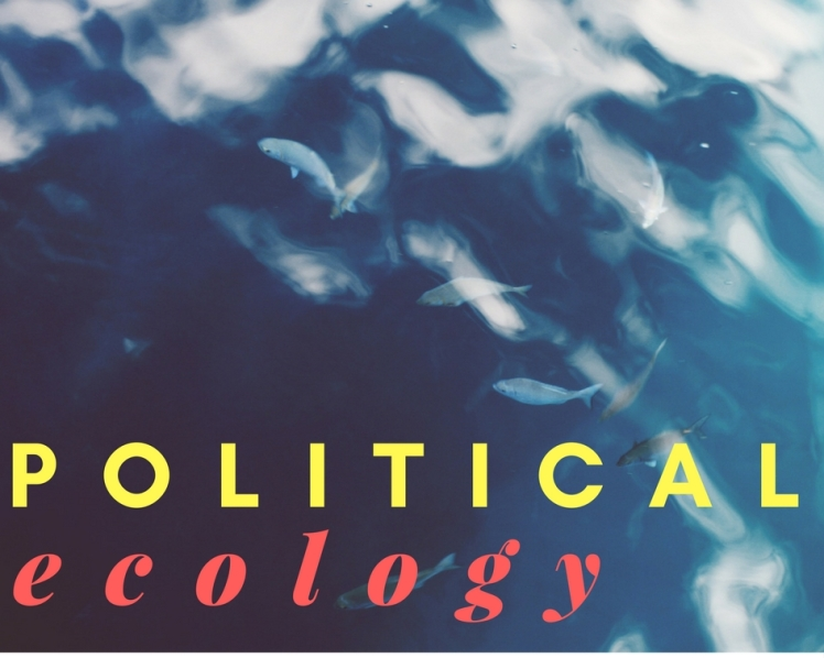 PoliticalEcologyImage