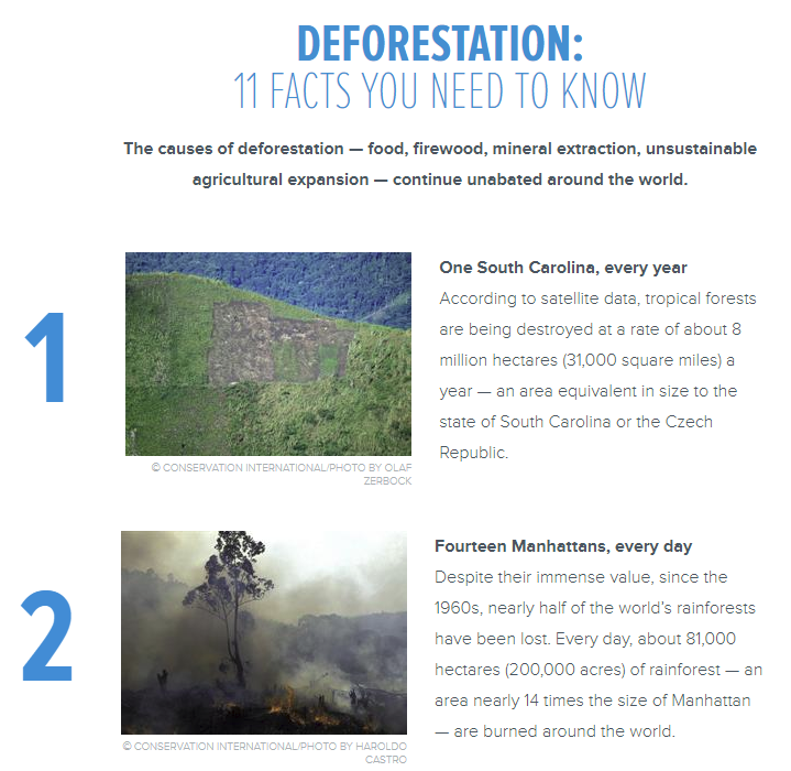 ConservationDeforestation
